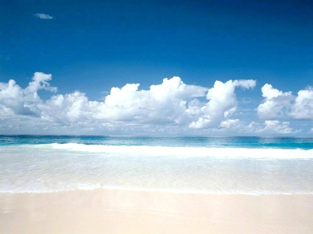 En la playa de vacaciones lo dejaron en computadora - 5 8